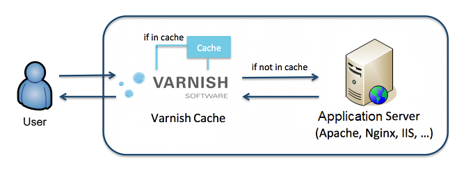 Speed up website with Varnish Cache